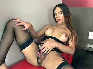 Busty tranny in lingerie jerks off her big cock during solo session